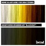 Blackout4